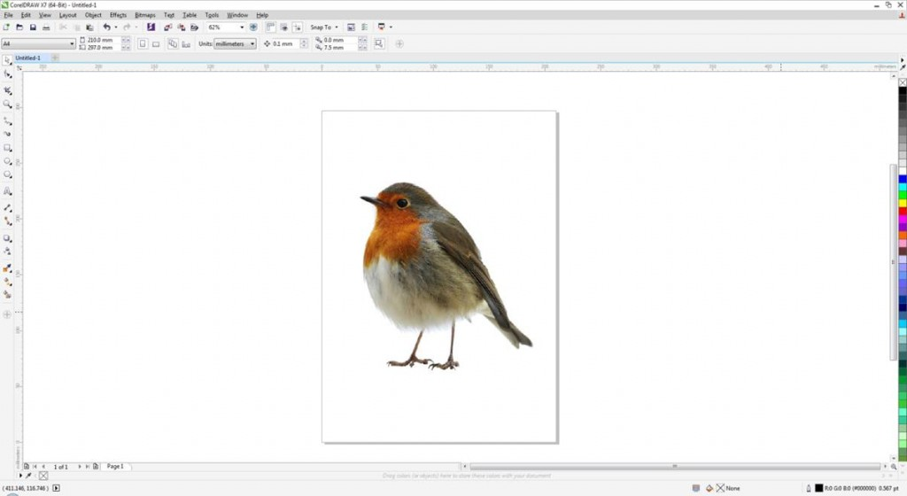 Stock Image of Robin